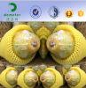 Kundenspezifische EPE Frucht China-Hersteller, die Netz für Papaya-Verpackung schützend und gepolstert worden sein würden