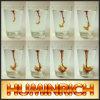 De Meststof k-Humate van Humate van het Kalium van de Capaciteit van de Holding van het Hoogwater van Huminrich (Behoud)
