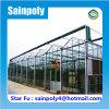 販売のためのほとんどの普及した現代ガラス温室