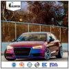 Colorshift automobilistico Refinish il pigmento del rivestimento