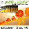 Saft Filling Machine (linearer Typ) /Tea Juice Filling Line