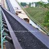 Förderwerk Blet/Flame-Resistant Conveyor Belt mit PVC Textile Carcass