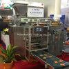Multi-Lines Sachet Packing Production Line für Powder