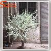 A decoração interior ou exterior Peach Blossom Árvore artificial por grosso
