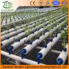 Système en plastique de culture hydroponique de culture hydroponique verticale de culture hydroponique