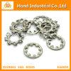Fixations en acier inoxydable de la rondelle de blocage dentelée DIN6798