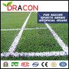 Alfombra de césped artificial de fútbol de césped (G-5504)