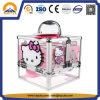 Neues Produkt-Karikatur-Schönheits-Fall-Aluminiumspeicher-Fall für Mädchen (HB-6353)