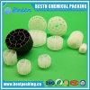 De plastic K1 K3 Media van Mbbr van de Filter van Kaldnes Bio voor Vloeibaar gemaakt - bed