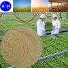 Fertilizante orgánico del compuesto del aminoácido del abono