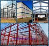 Steel prefabbricato Structure in Livestock con Installation From Qingdao Hapy