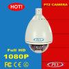 H. 264 Onvif 2mega Pixels Outdoor P2p IP PTZ Webcam