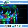Bande LED RVB Lumière SMD3528 3M Bande Amusement Park lumière