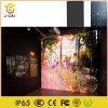 Scheda del LED che fa pubblicità al colore completo esterno di P6 SMD con qualità di Toppest