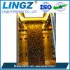 세륨을%s 가진 황금 공급자 중국 제조자 홈 수압 승강기 엘리베이터