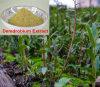Alimentação de fábrica Dendrobine Extracto Demdrobium Natural