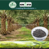 Il fertilizzante organico basato carbonio di Kingeta contiene l'efficace carbonio