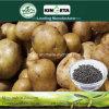 Concime organico NPK 8-6-18 del fertilizzante composto di Biohar del fertilizzante di conservazione di acqua di Kingeta