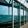 vetro di vetro di Temepered isolato 5-25mm /Low-E/vetro isolato rivestito Basso-e