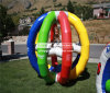 Gabbia CH-Ap-20150112-1 dell'aria di divertimento di acclamazione