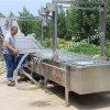 Vegetal da cenoura da batata e máquina de lavagem da limpeza da fruta
