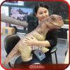 Bebê elevado impermeável do dinossauro da simulação