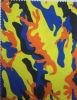 Tissu polyester 900d impression avec le PVC ou le revêtement polyuréthane