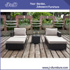 庭のテラスの柳細工の藤-屋外の家具はセットした(J383)