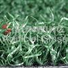 خارجيّ يرتّب عشب لأنّ لعبة غولف مجال