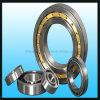 Rolamentos de rolo cilíndricos N1009k da fileira dobro de Zys do fabricante do rolamento da alta qualidade Nn3009k