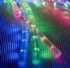 La luz LED de cuerda