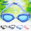 De professionele Beroemde Ontwerper van het Merk van de Vorm van het Fruit zwemt Beschermende brillen (cf.-5503)