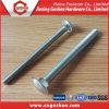 Wagen-Schrauben DIN603/runde quadratische Stutzen-Hauptschraube