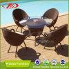 Présidence de loisirs, meubles extérieurs, présidence extérieure (DH-6633)