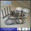 D4ae Kolben für Motor-Kolbenring-Set Hyundai-D4ae