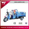 60V 30ah ~45ahの田舎転送のための電気貨物ローディングTrike