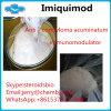 ローカル炎症性のための等級のImiquimodの薬剤の粉