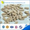 Tablilla certificada GMP del complejo de la vitamina B de la comida sana