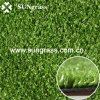 Golf Field (PP010)のための人工的なGrass Carpet