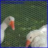 Engranzamento sextavado do coelho do ganso do engranzamento de fio das aves domésticas
