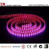 ULのセリウムSMD5060 14.4W/Meter IP68 RGB LEDの適用範囲が広い滑走路端燈