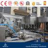 Heißer Verkaufs-gute Qualitätskompletter RO-Wasser-Produktionszweig