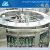 Het Vullen van het Mineraalwater van de Fles van het huisdier Machine (ak-CGF)