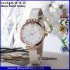 Orologi casuali delle signore della vigilanza del quarzo di modo del ODM (WY-076D)