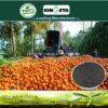 Kingeta registra il fertilizzante composto basato carbonio NPK 18-18-6 del terreno pH