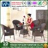 Tabela de jantar do Rattan da mobília da cadeira do Rattan ajustada (TG-598)