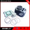 Parti di motore calde del motociclo di vendita per il kit del cilindro del modello YAMAHA Fz16