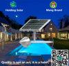 Lampe solaire brevetée du modèle DEL avec le contrôle intelligent