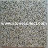(Met fijne korrels) Tegels van het Graniet van Vietnam de Gele en Plakken