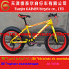 20  Schnee Bicycle/MTB Design 7s